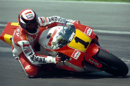 TRIBUTO A WAYNE RAINEY - FREDDIEFIX19